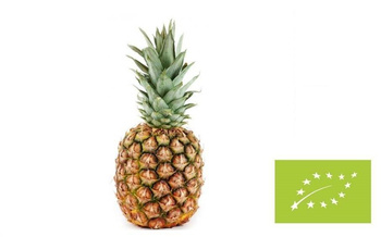 Ananas  BIO IMPORT 1 szt #
